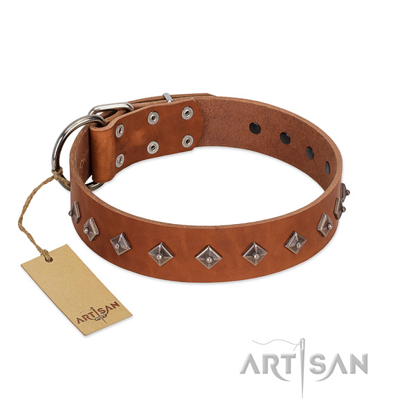 Natural leather dog collar with stunning embellishments handcrafted canine
