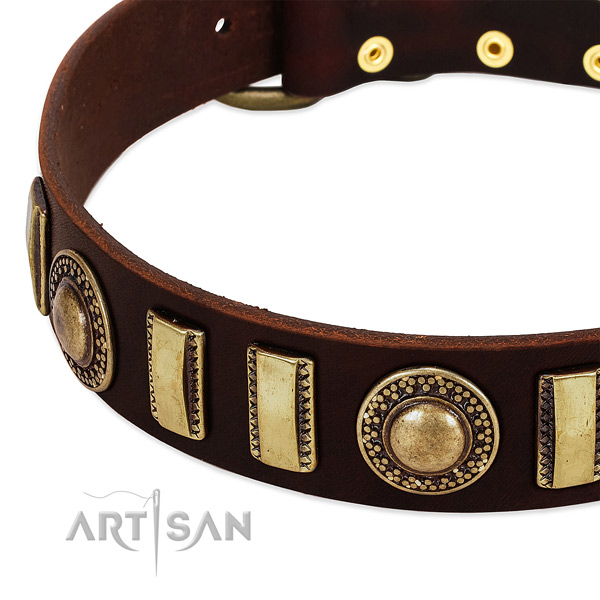 Durable leather dog collar with strong buckle