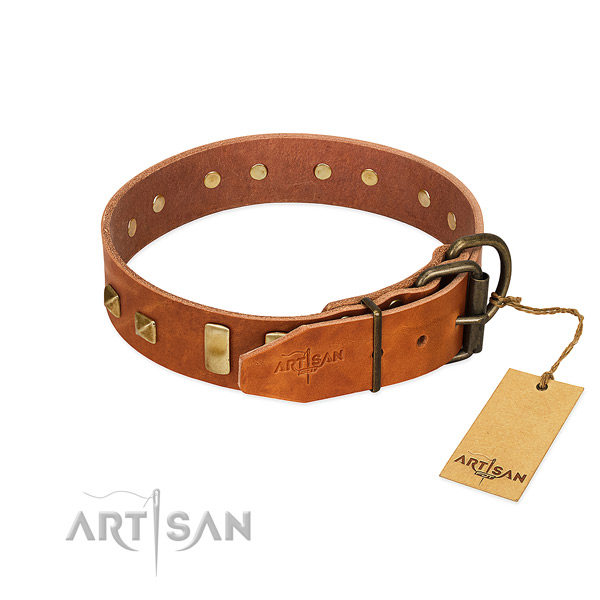 Gentle to touch full grain genuine leather dog collar with reliable fittings