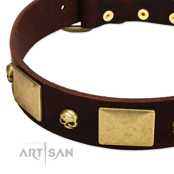 High quality leather collar with corrosion proof adornments for your doggie