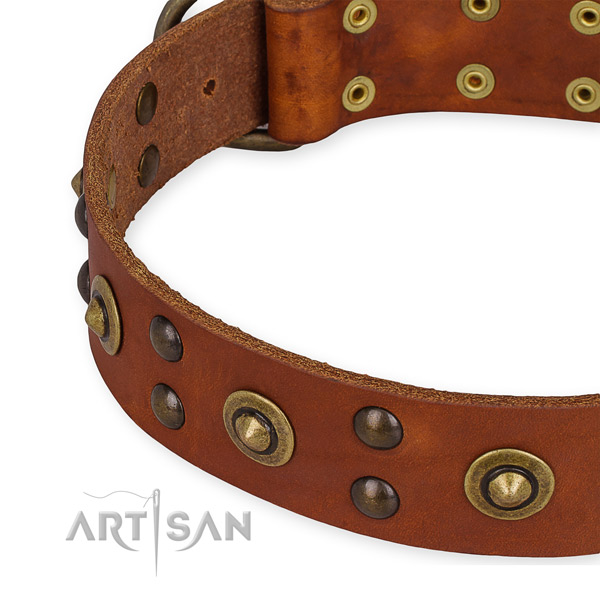 Full grain natural leather collar with strong fittings for your lovely pet