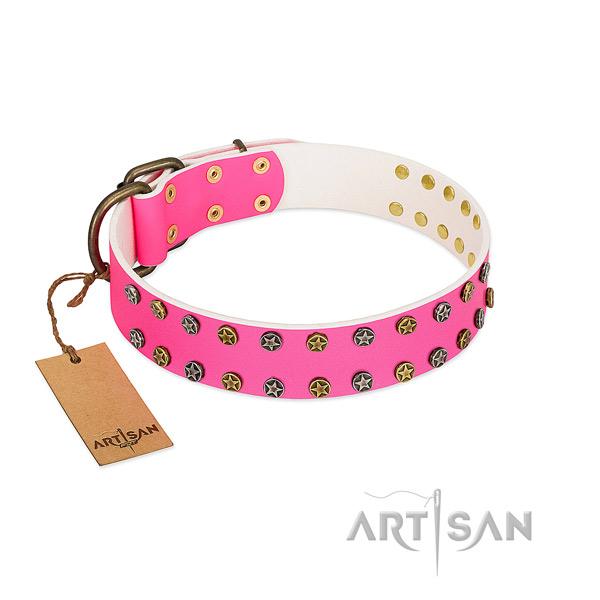 Soft full grain leather collar with embellishments for your dog