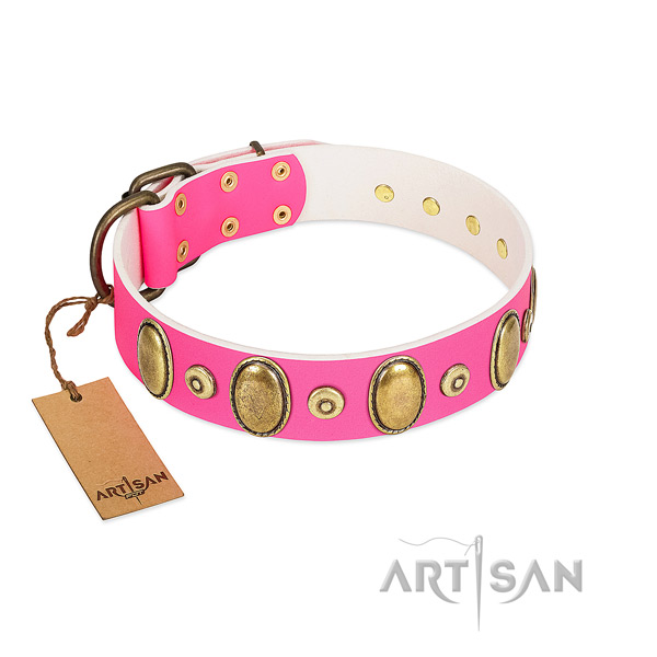 Flexible genuine leather collar with corrosion proof adornments for your dog