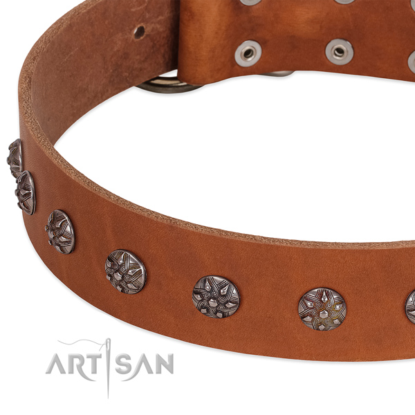 Soft genuine leather dog collar with studs for your canine