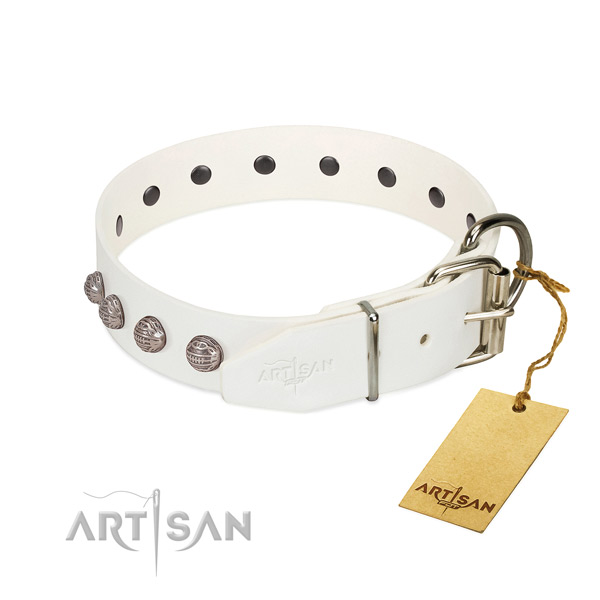 Leather dog collar of top notch material with designer studs