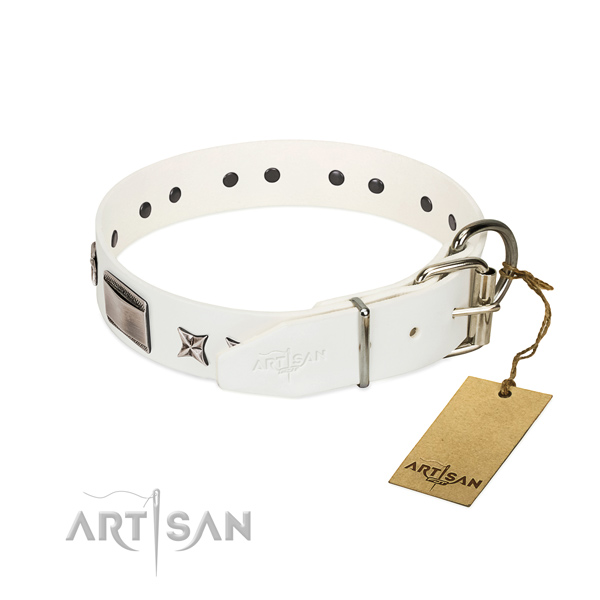 Stylish design collar of natural leather for your beautiful doggie