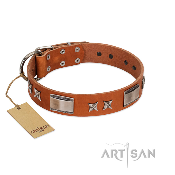 Gentle to touch leather dog collar with strong buckle