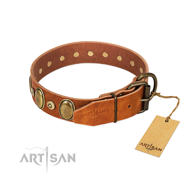 Rust resistant embellishments on everyday use collar for your pet