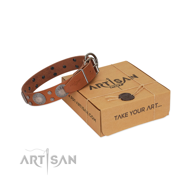 Amazing adornments on genuine leather collar for stylish walking your canine