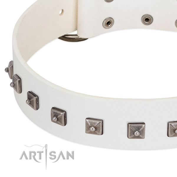 Best quality full grain genuine leather dog collar with top notch decorations