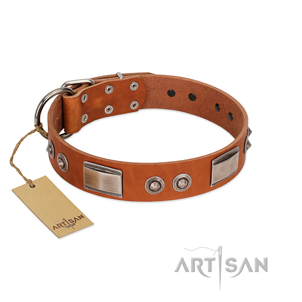 Easy wearing genuine leather collar with decorations for your dog