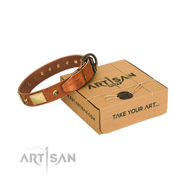 Strong full grain leather collar with corrosion resistant adornments for your dog