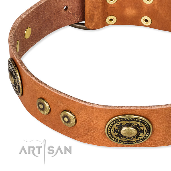 Full grain leather dog collar made of best quality material with studs