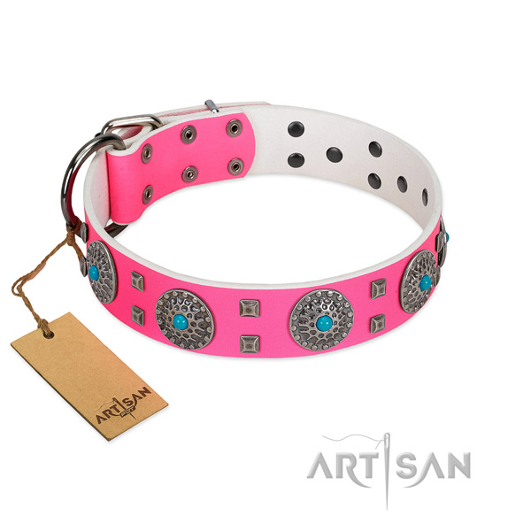Everyday use natural leather dog collar with significant embellishments