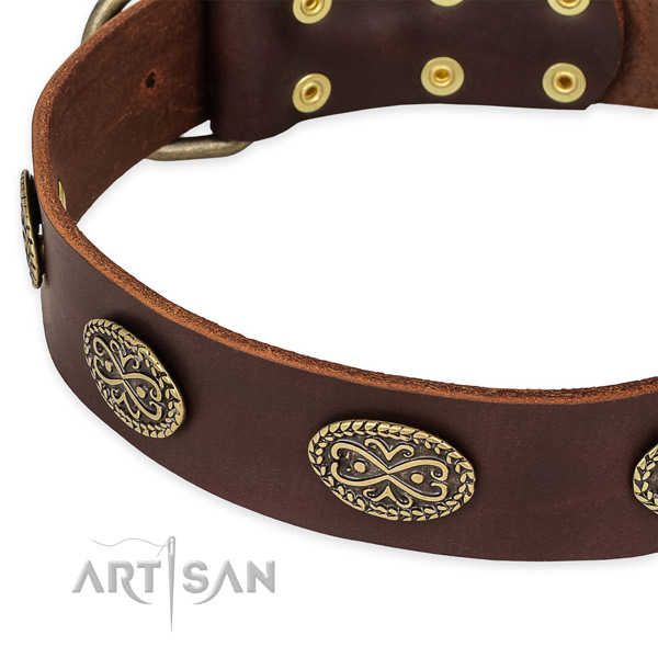 Stunning full grain natural leather collar for your attractive doggie