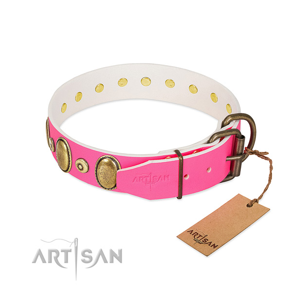 Corrosion resistant adornments on top notch full grain leather dog collar