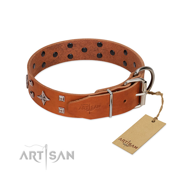Top notch full grain natural leather collar for your canine walking in style