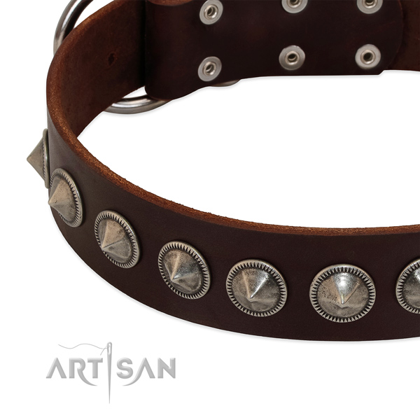 Everyday walking studded leather collar for your dog