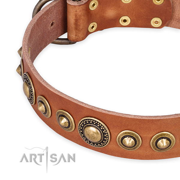 Top rate full grain genuine leather dog collar handcrafted for your attractive four-legged friend