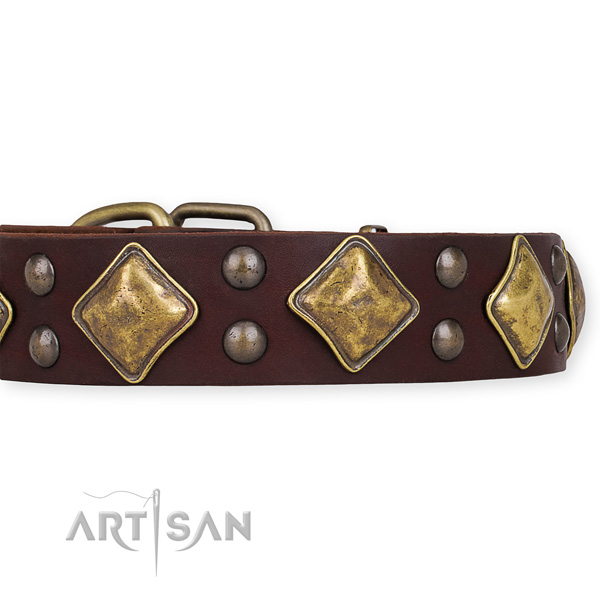 Natural leather dog collar with stylish design rust-proof adornments