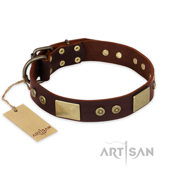 Exceptional natural genuine leather dog collar for daily use