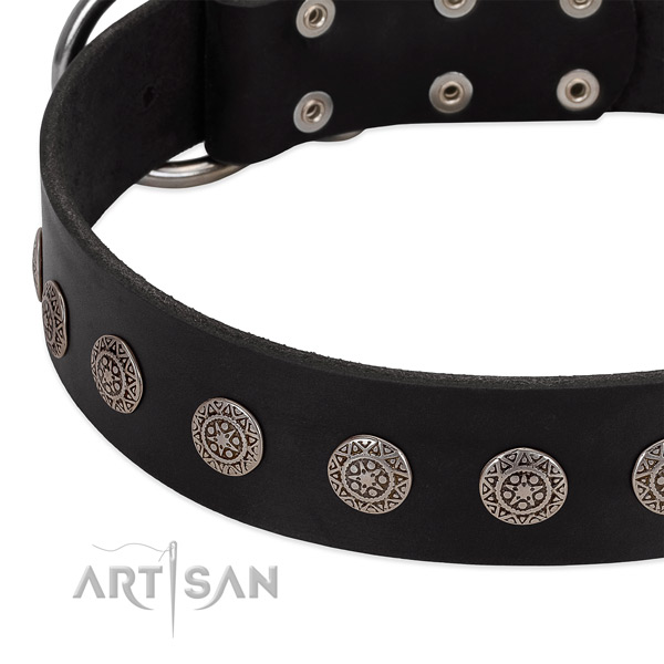Extraordinary dog collar of natural leather with decorations