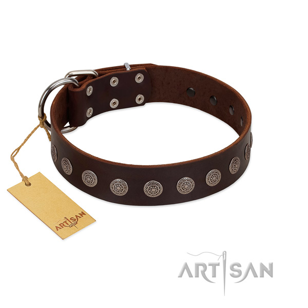 Incredible natural leather collar for your dog