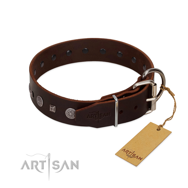 Quality genuine leather dog collar with embellishments