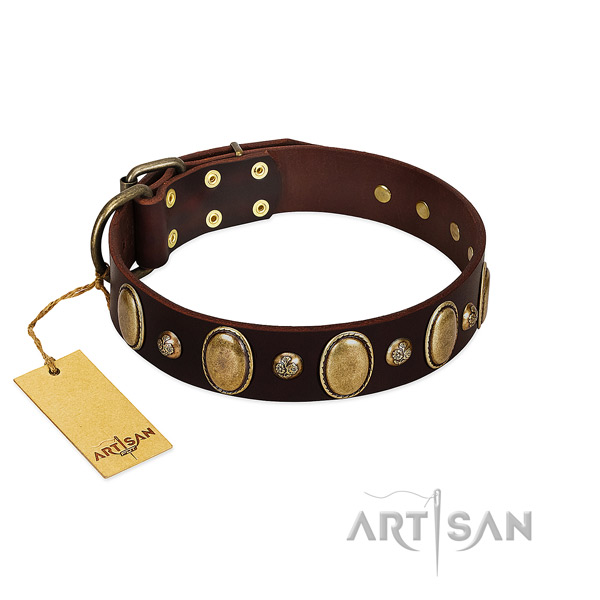 Full grain leather dog collar of top notch material with exceptional embellishments