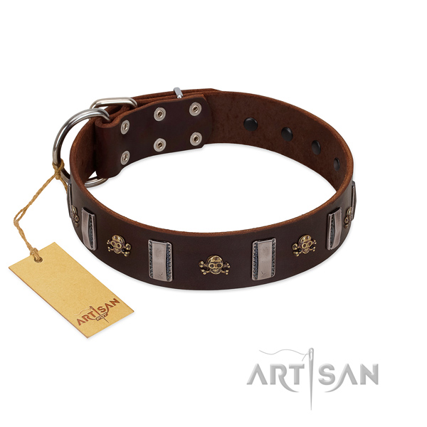 Genuine leather dog collar with extraordinary studs for your pet