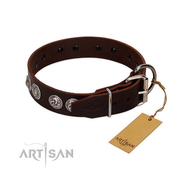 Exquisite leather collar for your canine daily walking