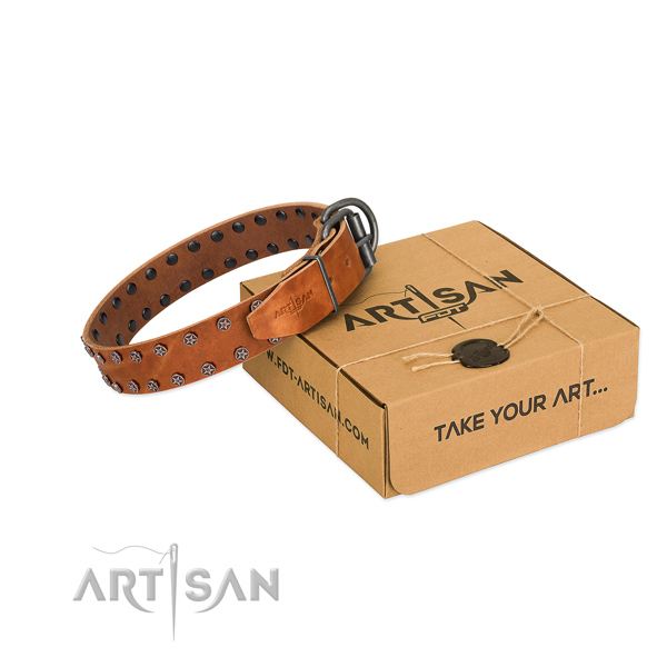 Soft full grain leather dog collar with decorations for your attractive pet