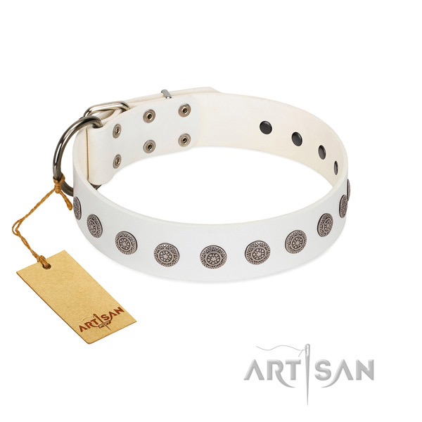 Impressive studs on genuine leather collar for comfortable wearing your four-legged friend