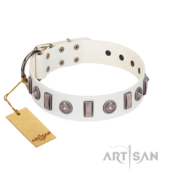 Best quality natural leather dog collar with adornments for your canine