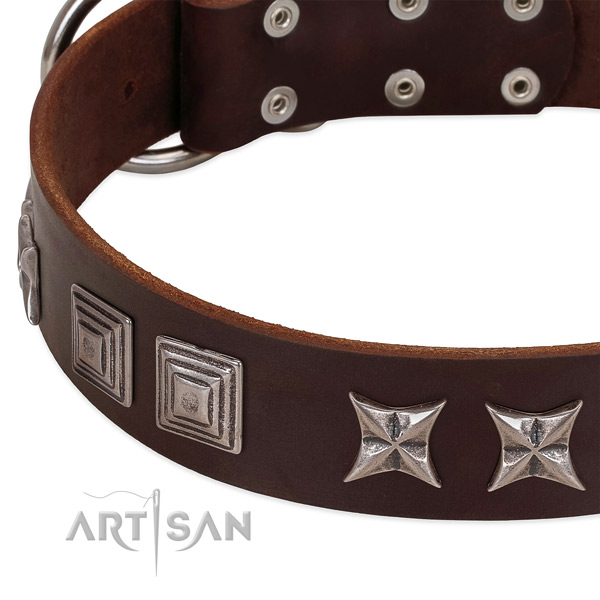 Comfy wearing natural leather dog collar with unusual decorations