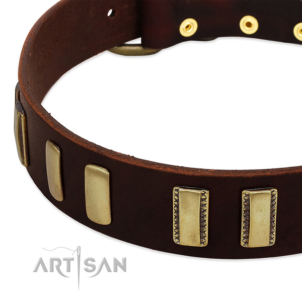Natural leather dog collar with reliable traditional buckle for daily walking
