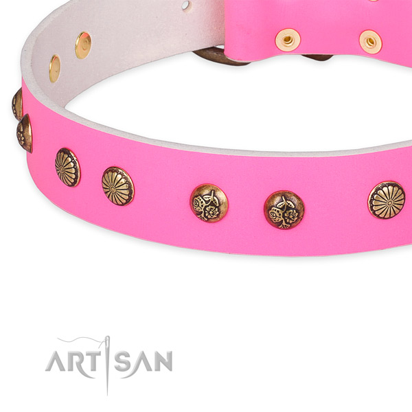 Stunning leather collar for your attractive canine