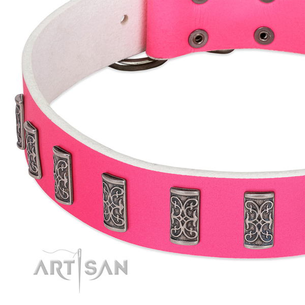 Trendy full grain genuine leather collar for your doggie everyday walking