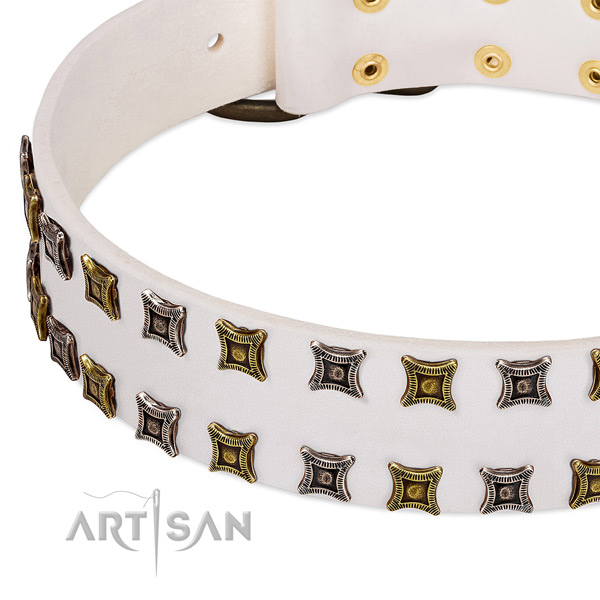 Genuine leather dog collar with adornments for your stylish dog