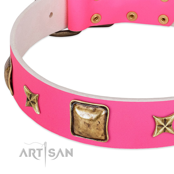 Full grain natural leather dog collar with top notch embellishments