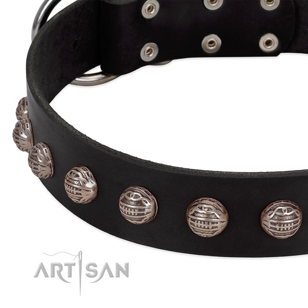 Genuine leather collar with unique embellishments for your pet