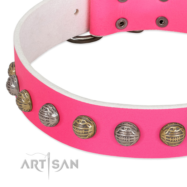 Durable buckle on full grain natural leather collar for stylish walking your doggie