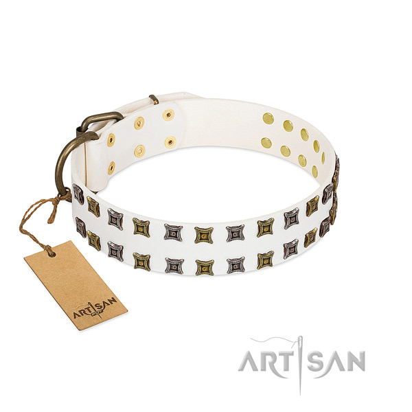 Durable natural leather dog collar with embellishments for your four-legged friend