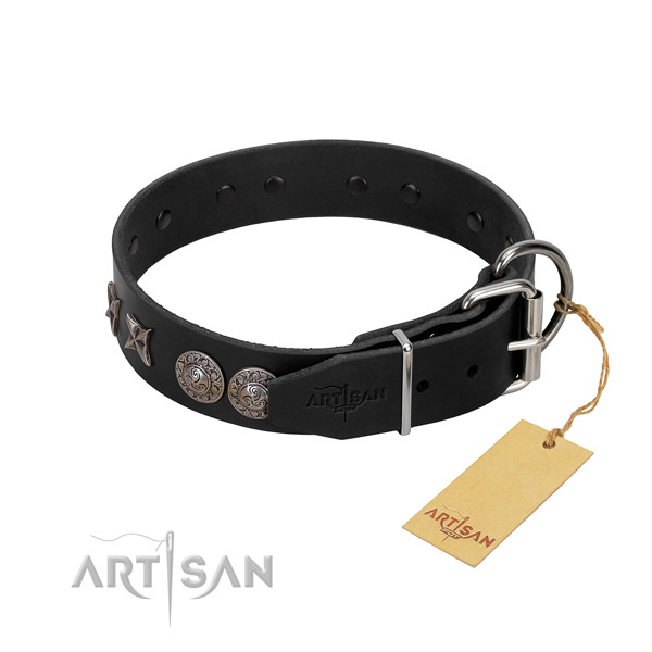Handy use dog collar of leather with unusual embellishments