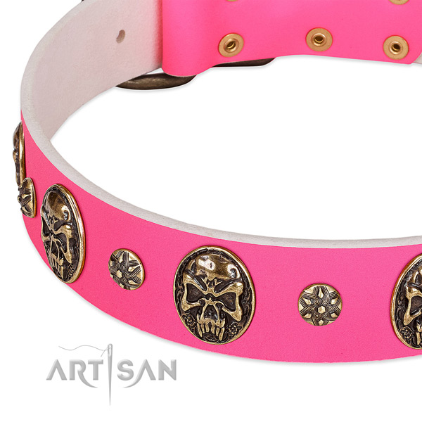 Convenient dog collar handcrafted for your stylish pet