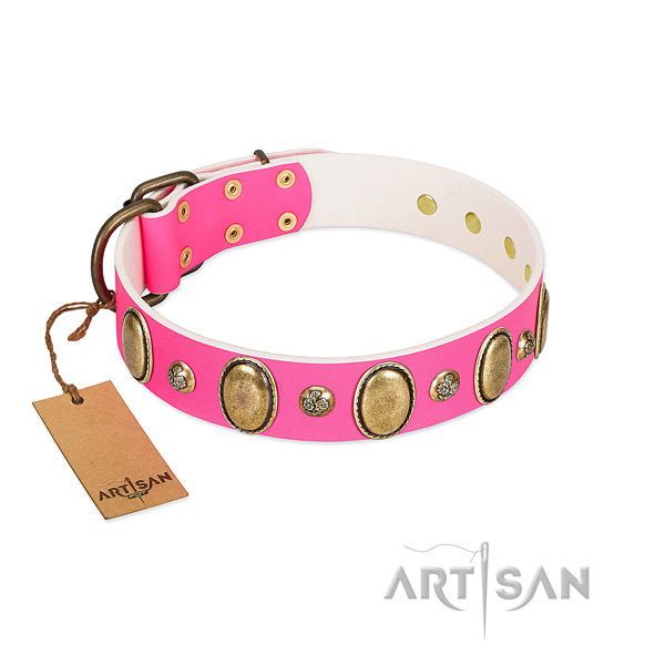 Leather dog collar of soft to touch material with significant embellishments