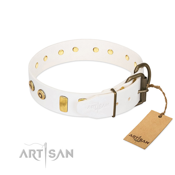 Unique studded genuine leather dog collar of top notch material