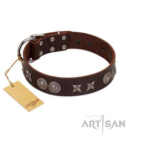 Top rate full grain leather dog collar for your impressive canine