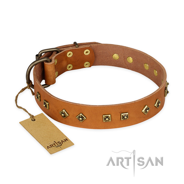 Exquisite full grain natural leather dog collar with rust resistant fittings