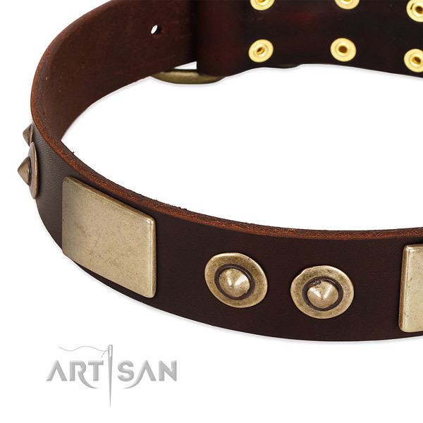 Rust-proof adornments on leather dog collar for your canine